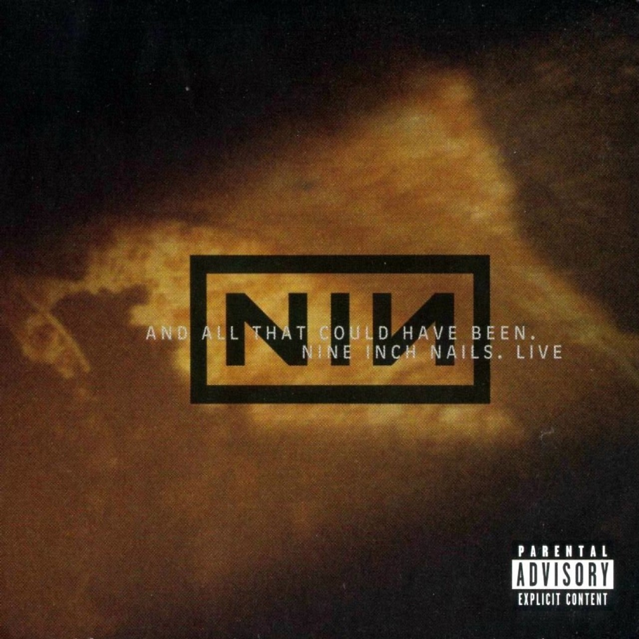 Live: And All That Could Have Been by Nine Inch Nails | Arena Music